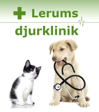lerum-2-rader-text-stor.png
