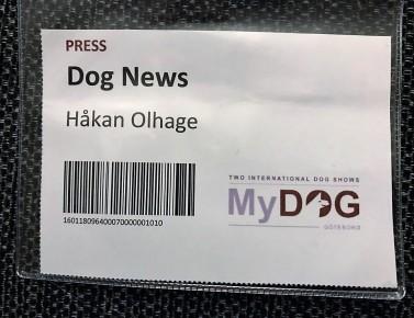 Baggemydog6