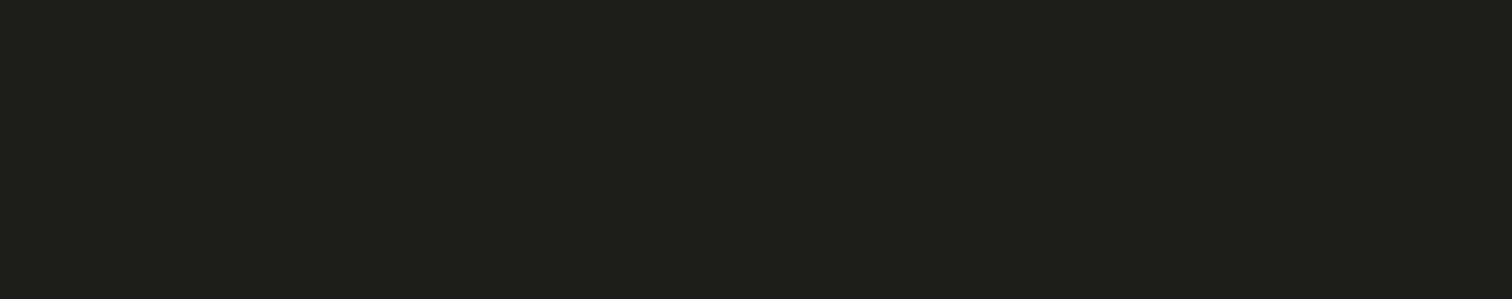 Dashing-Dogs_logo_special