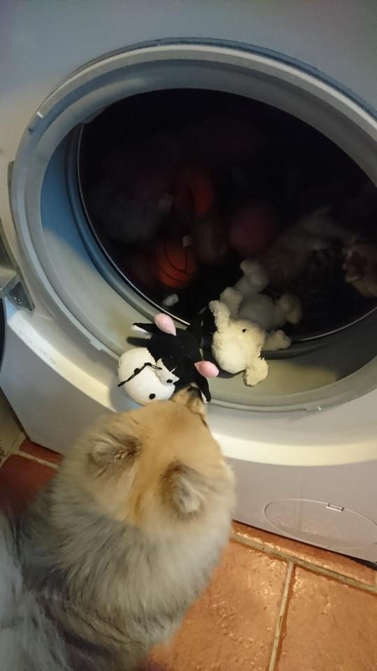 madicken_tvättar.jpg
